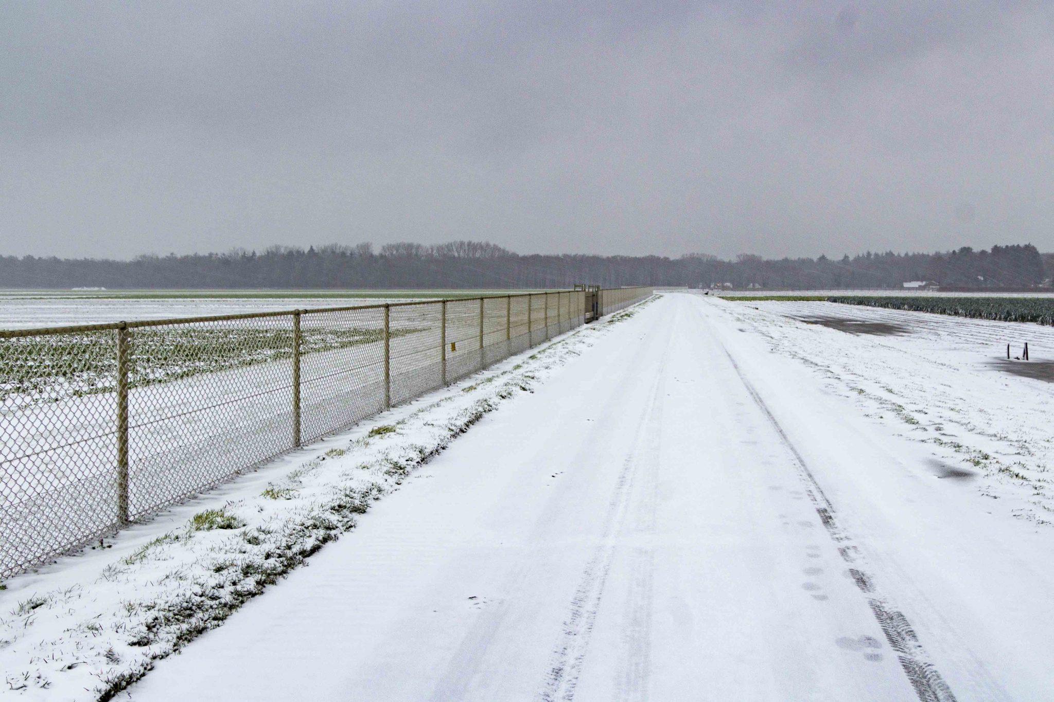 Sneeuw, kou, hardlopen.